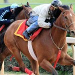 Oaklawn Park Puts Arkansas in the Big Leagues