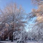 Sporting Life Arkansas Winter Weather Open Line