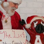 Santa Believes He's Brought Hogs Fans a Good Gift Early