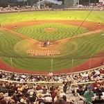 Razorback Baseball, UCA Bears Baseball Lose Openers