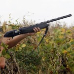 Rex Nelson: Arkansas Dove Season Signals Fall Is Near