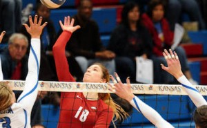 Razorback, Sugar Bear Volleyball Teams Fall in NCAA Tourney