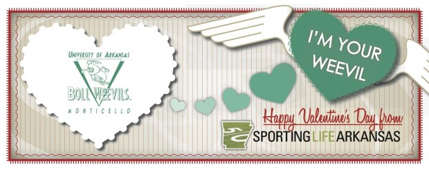 Happy Valentine's Day Boll Weevils