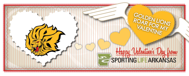 Happy Valentine's Day Golden Lions