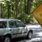 Drivers Should Watch for Deer as Arkansas Rut Begins